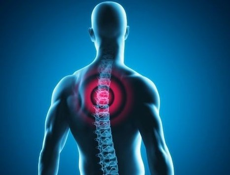 Des check-up gratuits de la colonne vertébrale le 16 octobre | Seniors | Scoop.it