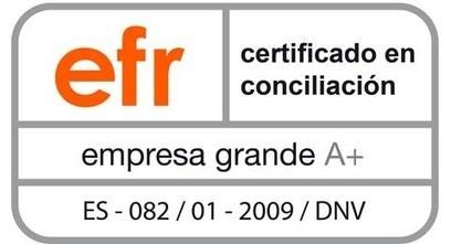 Reale Seguros obtiene la certificación efr en conciliación e igualdad | Conciliación (de la vida personal y profesional) | Scoop.it