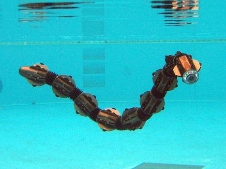 HiBot Demos New Amphibious Snake Robot | Post-Sapiens, les êtres technologiques | Scoop.it
