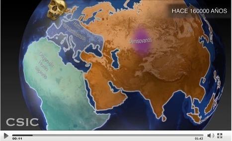 Tuvimos hijos con los neandertales ya hace más de 100.000 años | Arqueología, Historia Antigua y Medieval - Archeology, Ancient and Medieval History byTerrae Antiqvae (Blogs) | Scoop.it