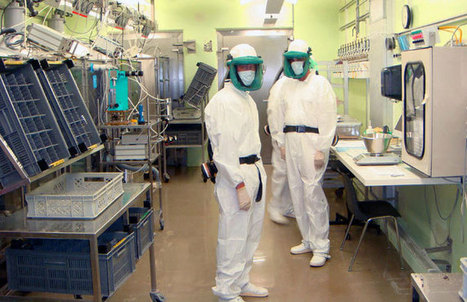Lab rats: The anatomy of deadly product defence campaigns - Hazards magazine | Asbestos | Scoop.it