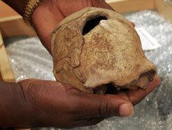 Histoire: L'Homme moderne n'a pas coexisté avec son ancêtre l'Homo erectus | LesNews | Scoop.it