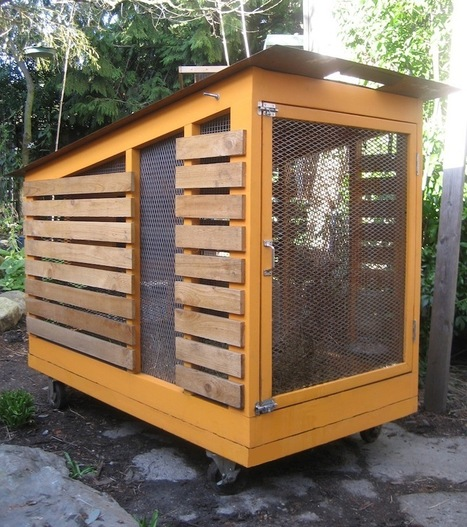 Modern Chicken Coop in Urban Seattle | Vertical Farm - Food Factory | Scoop.it
