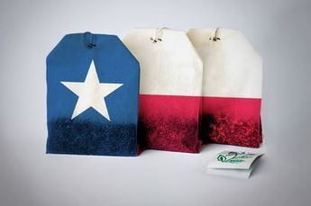 A Seat for the Tea Party   Texas Politics Now   Scoop.it