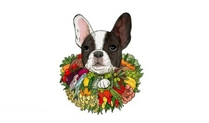 El Bulli chef Ferran Adrià seeks French Bulldog to front rebrand | Corporate Identity | Scoop.it