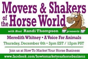 """""""She talks to Animals!""""  HTMYHB's Movers and Shakers of the Horse World is proud to present Meredith Whitney Animal Communicator/Intuitive/Medium 