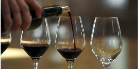 La bactérie qui fait perdre au vin son acidité - Sciences et Avenir | Oenotourisme en Entre-deux-Mers | Scoop.it