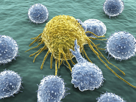 The Latest Updates on Cancer Treatment | High Quality Content | Scoop.it