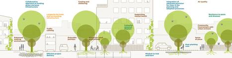 Les arbres dans la ville - un guide pour l'intégration des arbres en milieu bâti | Plusieurs idées pour la gestion d'une ville comme Namur | Scoop.it