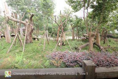Street View : Google Maps fait la tournée des zoos | Cabinet de curiosités numériques | Scoop.it