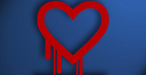 Heartbleed : la NSA aurait su et rien dit | Libertés Numériques | Scoop.it