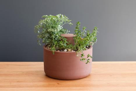 Planter: Il vaso che tiene bagnate le piante secondo la tecnica Olla | fiori e piante, curiosità e notizie | Scoop.it