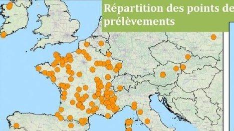 Saône-et-Loire : 30 ans après Tchernobyl la pollution radioactive est toujours présente - France 3 Bourgogne | Chronique d'un pays où il ne se passe rien... ou presque ! | Scoop.it