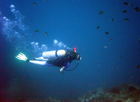 Buoyancy Control! | All about water, the oceans, environmental issues | Scoop.it