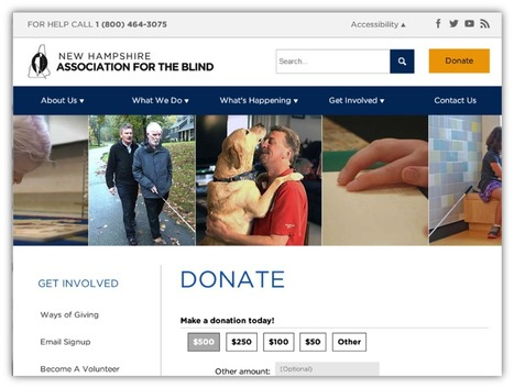 The Top 10 Most Effective Donation Form Optimizations You Can Make | npENGAGE | Nonprofit website, donate now button, donation page, thank you page | Scoop.it