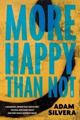 a review of More Happy Than Not   Young Adult Novels   Scoop.it