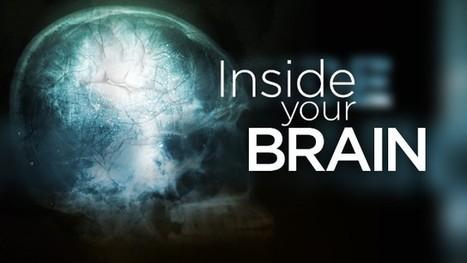 Top brain scientist is 'philosopher at heart'   Neuroscienze   Scoop.it