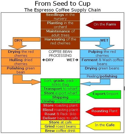 Ethical Sourcing: Coffee