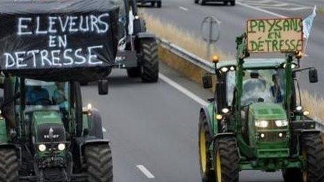 Les politiques ont-ils abandonné les agriculteurs ? - France 3 Aquitaine | Le Fil @gricole | Scoop.it
