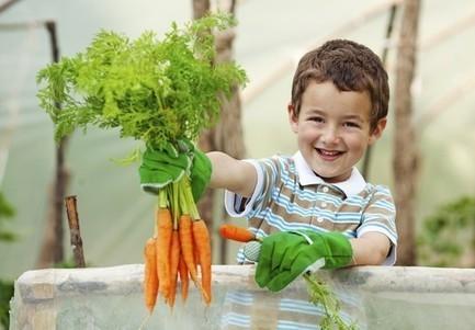 Pour lutter contre l'obésité, apprenez aux enfants à cultiver ! - News ... | hamburger | Scoop.it