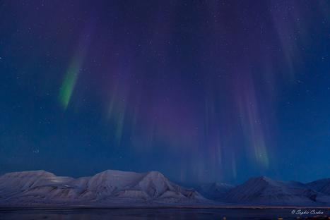 Crise temporelle - #aurore boréale à 11H du matin à #Longyearbyen au #Spitzberg #Svalbard | Hurtigruten Arctique Antarctique | Scoop.it