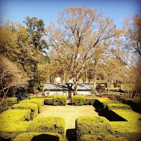 at Oak Alley Plantation | Oak Alley Plantation: Things to see! | Scoop.it