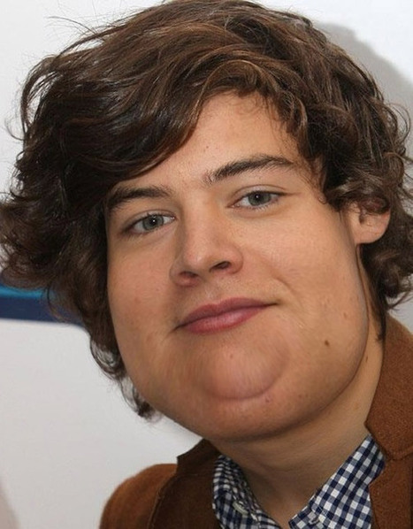 The Fatty One Direction Dudes Are Put On A Diet | wellness and health | Scoop.it