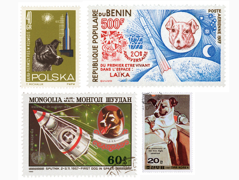 The stray dogs that became Soviet space heroes | General History | Scoop.it