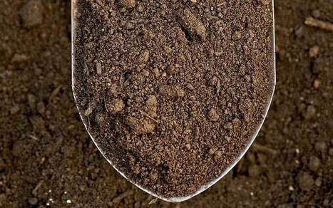 10 Easy Soil Tests | Gardening | Hobby | Hobby, LifeStyle and much more... (multilingual: EN, FR, DE) | Scoop.it