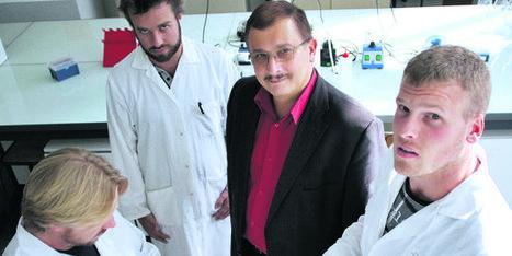 OGM : le Haut Conseil des biotechnologies réfute les conclusions du Pr Séralini | Nourrir la planète... autrement | Scoop.it