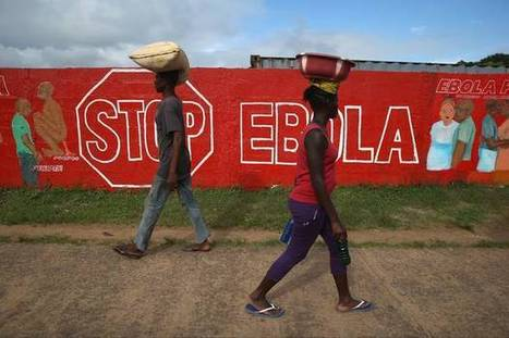 Ebola outbreak: Virus 'spreading quickly' in Sierra Leone | Virology News | Scoop.it