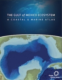 The Gulf of Mexico Ecosystem: There's a Map for That | landscape ecology | Scoop.it
