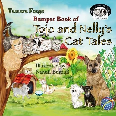 Bumper Book of Seven Cat Tales Makes Ideal Christmas Present for 4-8Yr Olds | about cats | Scoop.it