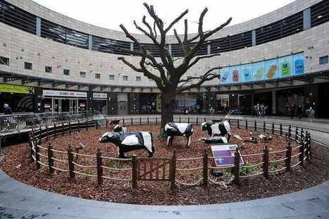 Clegg floats garden cities rebate « Shropshire Star | About Kent, UK | Scoop.it