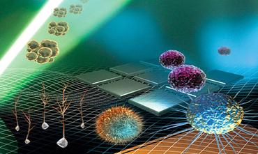 Parkinson Stem Cells | Stem Cell Treatment | Scoop.it