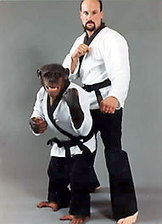 Charlie the Karate Chimp dies - Lockport Union-Sun & Journal | Karate : A mix of tradition and modernity | Scoop.it