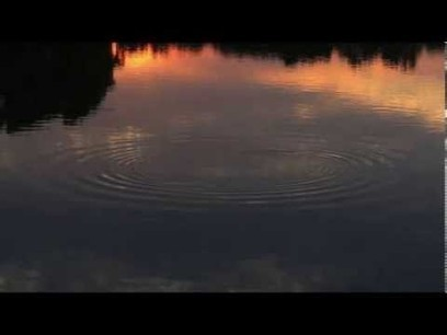 Euphoria & Relaxation ~ Binaural Beats + Isochronic Tones (ASMR) | Best Videos On YouTube | Scoop.it