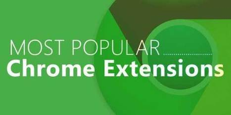 18 Most Popular Google Chrome Extensions – Infographic | EXEIdeas | Scoop.it