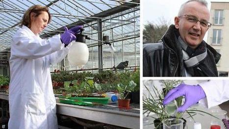 L'agroécologie pousse Bio3G vers les sommets | Chimie verte et agroécologie | Scoop.it