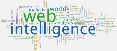 Anne Walton: Web Intelligence Adds Another Dimension to Analysis | SIVVA | Scoop.it