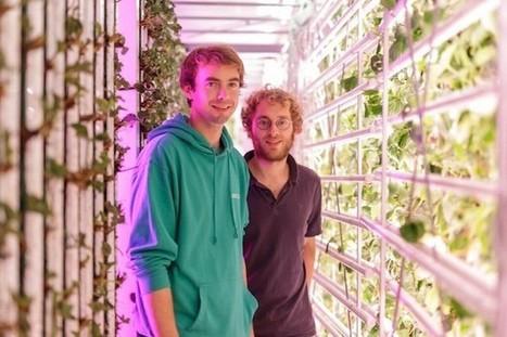 #AgriTech : Agricool, qui cultive des fraises dans des containers, réalise un tour de seed - Maddyness | Agriculture citadine | Scoop.it