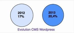 CMS Wordpress : en finir avec les solutions pro...   La communication et les réseau sociaux des PME   Scoop.it