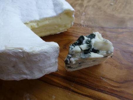 La génétique des moisissures, tout un fromage - Le Monde | Industrie fromagère | Scoop.it