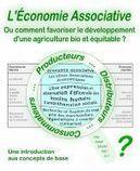 L'économie associative - Ou comment favoriser le développement d'une agriculture bio et équitable - Conférence - Stéphane Lejoly - Tri-articulation | Développement durable | Scoop.it