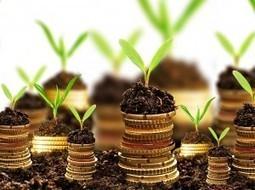 3 virksomheter du kan starte for mindre enn 1500 kroner - CompareKing.no | Forbrukslån på dagen uten sikkerhet | Scoop.it