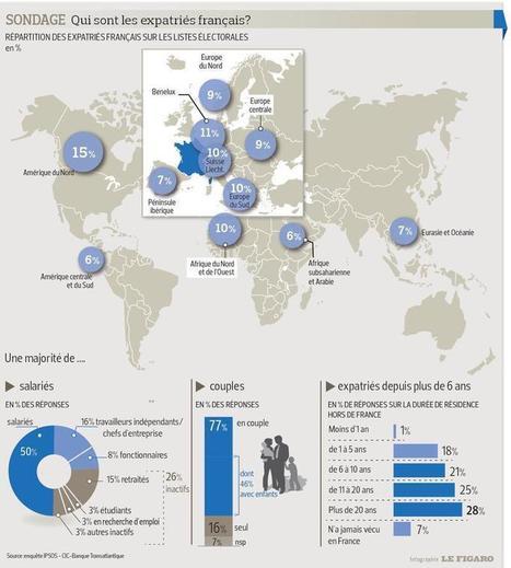 42% des Français expatriés sont inquiets à l'idée de rentrer | French-Connect | Scoop.it