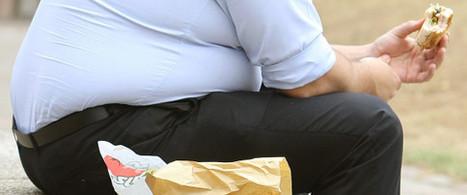 13% de la population adulte mondiale est obèse | la presse AGRIcole | Scoop.it