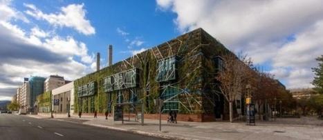 Una facciata vegetale per Vitoria-Gasteiz | Facciate, facades, vertical green wall, colorful facades, wall street art, facades led media light, projection  mapping | Scoop.it