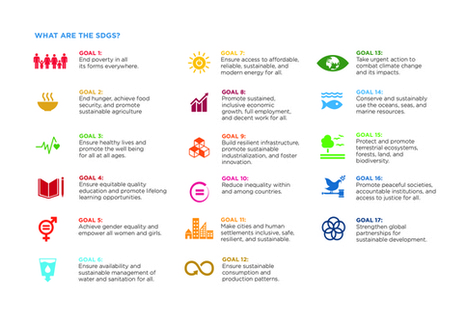 7 Steps Philanthropy Can Take to Bring the SDGs Home to America   Innovations sociétales, RSE, Philanthropie   Scoop.it