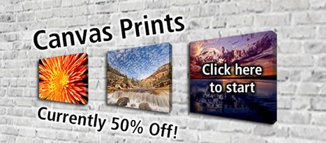 Why You Choose Print Bubble | Canvas Prints | Scoop.it